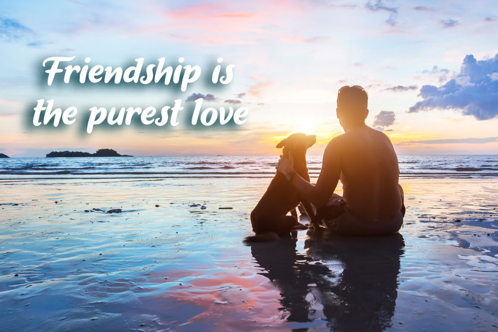 friendship quote dog and man