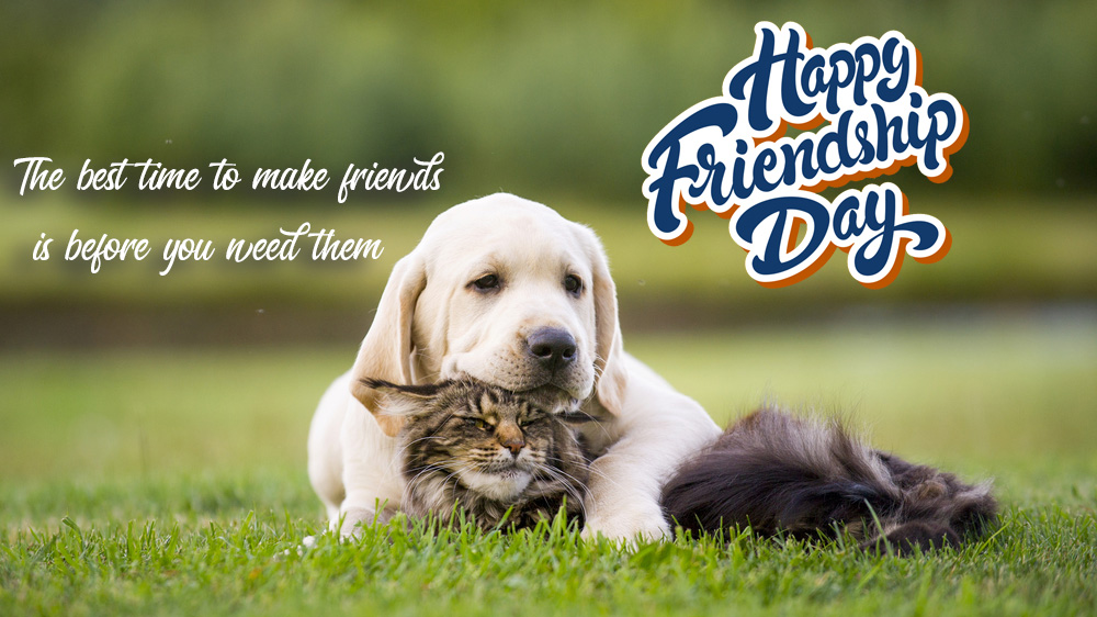 Happy Friendship Day 2020 Quotes, WhatsApp DP and Status Ideas